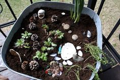 If you want to make your own outdoor fairy garden here is a list of supplies you will need: >washtub, or other large size planter >Black earth, or potting soil >gemstones or crystals >shells, (every size goes) >twigs, pinecones >plants, (we used succulents, tulips and violas)