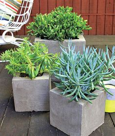 Make your own attractive, modern-looking planters from cinder blocks and resurfacing cement with this easy home décor project.