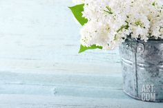 Bouquet of White Lilacs Premium Poster by Anna-Mari West at Art.com
