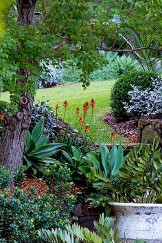 Garden on Central Coast, NSW, by landscape designer Michael Cooke. Photo: Brigid Arnott | Story: Australian House & Garden