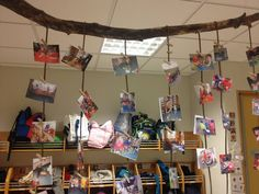Classroom pictures hung by tree branch - Stekkjaras School Iceland ≈≈