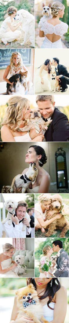 Para finalizer el día con una sonrisa, nada mejor de la compañía de tu mejor amigo! #Dogs @Wedding Sophisticate #melinarojasdeco 27 Adorable Wedding Dogs - so much love