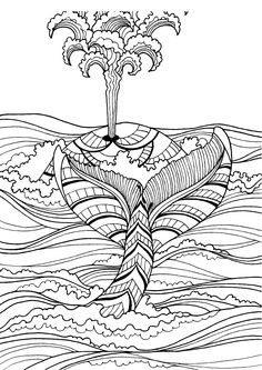 Whale Adult Colouring Page In Sheets