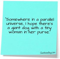 'Somewhere in a parallel universe, I hope there is a giant dog with a tiny woman in her purse.'