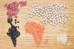 mapa con semillas