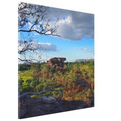 Kakadu canvas print - photography gifts diy custom unique special