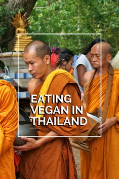 Vegan Thailand Food Guide- All you ever needed to know about ordering vegan Thai food in the land of smiles! Find out which Thai phrases and words you should familiarize with and learn about the concept of gin jae so you can eat your favorite Thai dishes without worry!