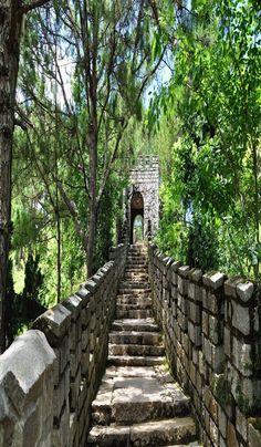vietnam - dalat city - taynguyen - south vietnam