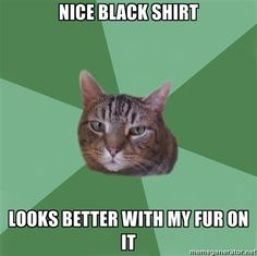 Also works for white shirts when your cat has both colors...