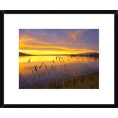Global Gallery Sunrise at San Luis Reservoir, San Joaquin Valley, California by Tim Fitzharris Framed Photographic Print Size: