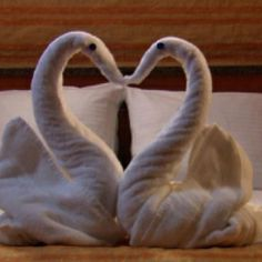swan folded towel heart towels������ pinterest