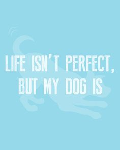 Dang right my dog is perfect! 😉 #WeeklyPLAYQuote   #dogquotes #dogmoments #dogsarethebest #dogloversfeed #dogslife #dailydogs #wedontdeservedogs #dogsarebetterthanhumans #dogsareloves #dogsarethebest #dogsmakeeverythingbetter #dogmeme #introvert #caninetrovert #dogsayings #dogjokes #dogmomaf #mood Cute Cat Quotes, Dog Quotes Funny, Funny Dogs, Play Quotes, Dog Jokes, Animal Quotes, Four Legged, Introvert, Dog Mom