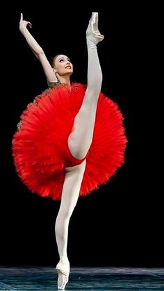 The beautiful Svetlana Zakharova Photo by Gene Schiavone. Tutu Ballet, Ballet Art, Ballerina Dancing, Ballet Girls, Ballet Dancers, Ballerinas, Ballet Images, Ballet Pictures, Dance Pictures