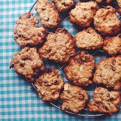 havermout-kaneel koekjes