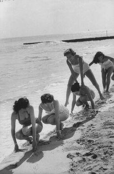 0rchid_thief: Miami, 1956
