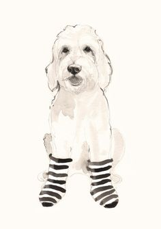 Doodle in Striped Socks by annatyrrell on Etsy
