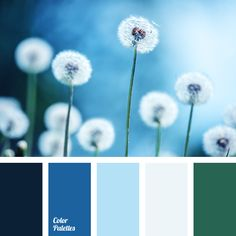 Color Palette #2828 | Color Palette Ideas | blue-green.