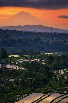 Jatiluwih Sunrise, Bali   Indonesia (by Eggy Sayoga)