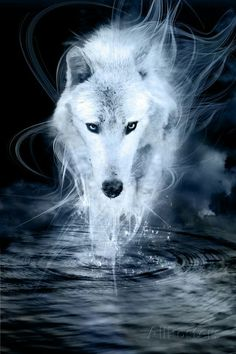 Wallpaper Lobos, Wolf Wallpaper, Animal Wallpaper, Black Wallpaper, Anime Wolf, Mythical Creatures Art, Fantasy Creatures, Tier Wolf, Wolf Background
