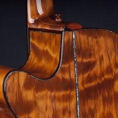 Kiwi Model: Williams Signature Whitebait Acoustic Guitar by Laurie  Williams