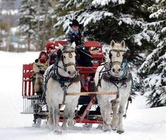 Winter Time Sleigh Rides ONLY at our Snow Mountain Ranch Location […] Winter Park Colorado, Estes Park Colorado, Country Christmas, Christmas Scenery, Merry Christmas, Christmas Travel, Magical Christmas, Winter Christmas, Christmas Time