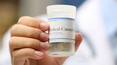 legalization of medical cannabis essay The Effects of Medical Marijuana on Alzheimer's Treatment Alzheimer's Treatment, Hash Oil, Drug Test, Buy Weed Online, Drug Free, Cancer Cure, Medical Cannabis, Alzheimers, Research Paper