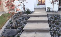 5 Modern Concrete Paver Ideas for Your Walkway Paver Walkway, Concrete Walkway, Walkway Ideas, Walkways, Landscaping Ideas, Landscape Maintenance, Curb Appeal, Sidewalk, Stairs