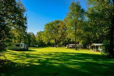 Camping, Tent, Golf Courses, Travel, Campsite, Store, Viajes, Tents, Destinations
