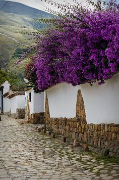Beautiful street in Villa de Leyva, considered one of the finest colonial villages of Colombia Dream destinations, Surreal Places To Visit Places Around The World, The Places Youll Go, Around The Worlds, Oh The Places You'll Go, Beautiful Streets, Beautiful World, Beautiful Places, Magic Places, Colombia South America