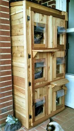 Outdoor cat shelter and like OMG! get some yourself some pawtastic adorable cat apparel! Feral Cat Shelter, Feral Cat House, Feral Cats, Cat Shelters, Pet Cats, Animal Shelter, Outside Cat House, Outside Cat Shelter, Niche Chat