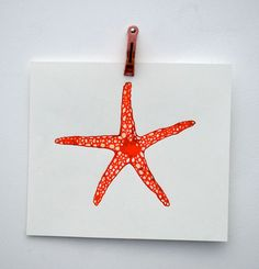 lisa congdon.  star fish painting.  made for the dictionary of ordinary extraordinary animals.  (we gave it to my nephew for christmas.)
