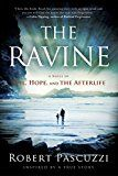 Free Kindle Book -   The Ravine: Evil, Hope, and the Afterlife Check more at http://www.free-kindle-books-4u.com/religion-spiritualityfree-the-ravine-evil-hope-and-the-afterlife/