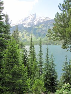 Wyoming, USA is a great destination for the outdoorsy: #vacation #nature #adventure Visit transatlantic.travel or contact Eileen Schlichting to learn more!