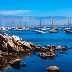 Morning walks 💙 harbor seals and peaceful places!  #goodmorning . .  #vacationmode #Chapirbrand #montereybay #calilove #seatravels #California #westcoast #happyplace #inspiration #artisanhandbags #montereybaylocals - posted by Chapir Brand https://www.instagram.com/chapir_handbags - See more of Monterey Bay at http://montereybaylocals.com