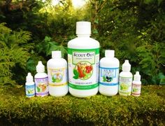 Why glycerin tinctures vs. alcohol tinctures? (Trilight Health)