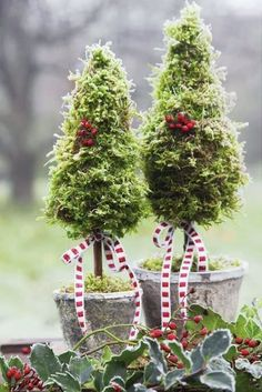 Eine Mini-Christbaum als neues Bastelprojekt? :) Best Picture For Landscaping Around Trees with rock Christmas Topiary, Diy Christmas Tree, Christmas Love, Rustic Christmas, All Things Christmas, Winter Christmas, Christmas Wreaths, Christmas Ornaments, Christmas Lights