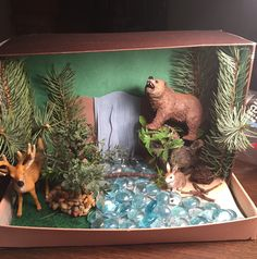 Diorama Forrest Biome. Deciduous Forrest Ecosystems Projects, Science Projects, School Projects, Rainforest Habitat, Rainforest Project, Temperate Deciduous Forest, Deer Habitat, Forest Ecosystem, Animal Habitats