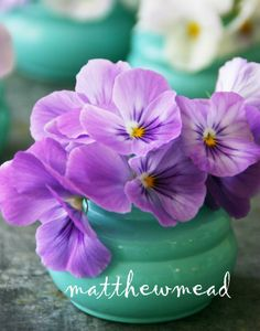 This year, our personal Easter table will be inspired by vintage shades of lavender.    There will be pansies, hydrangeas. purple transfer, and bunnies embellished with edible pigments: