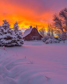 Great Pictures, Nature Pictures, Landscape Photography, Nature Photography, Nature Architecture, Winter Photos, Winter Scenery, Snow Scenes, Winter Beauty