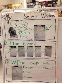 Science Writing Process Chart