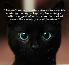 """The #cat's name was Klara and I ran after her endlessly, hoping to #hug her, but ending up with a #tail grab at most before she ducked under the nearest piece of #furniture."" #quote #pet #black #cat #kitten #kitty #cute"