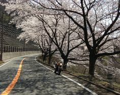 20140411@奥琵琶湖(oku-biwako)PW
