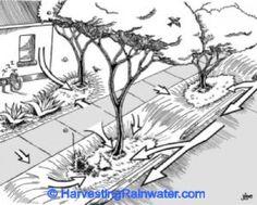 Fig. 27. A landscape abundantly harvesting resources.