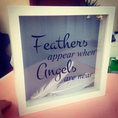 Feathers Appear Box Frames