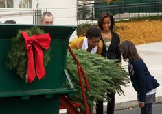 First lady, Michelle Obama and Sasha taken in the scent of the White House Christmas Tree Nov. 26, 2010.