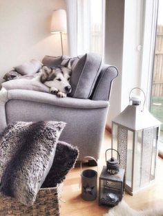 ♡♡♡A nice home with a Siberian Husky!