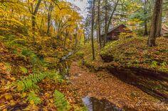 Capture Wisconsin Photo Contest - Durwards Glen, WI Geoplanetplace ...