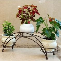 AISHN Elegant Arch Design Black Metal Plant Stand / Flower Pots Shelf Unit / Decorative Planter Stand with 3 holders Potted Plant Rack Organizer (Black) Purple Flowering Plants, Green Plants, Metal Plant Stand, Diy Plant Stand, House Plants Decor, Plant Decor, European Garden, Wrought Iron Decor, Decoration Plante
