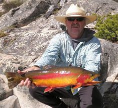 On June 22 2012 an On June 22 2012 angler Rick Mickelsen landed a potential All-Tackle Length record golden trout (Oncorhynchusaguabonita) while fishing Golden Lake Wyoming USA. Fly Fishing Tips, Pike Fishing, Fishing Girls, Fishing Life, Kayak Fishing, Fishing Boats, Fishing Quotes, Going Fishing, Trout Fishing Lures