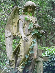 Rather forlorn angel in Highgate Cemetery in London